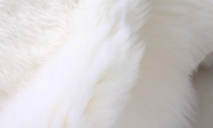 羊毛地毯掉毛的原因及应该如何解决