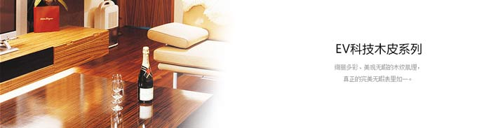 EV科技木皮系列